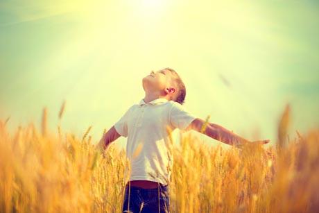 Freinet Schulen Pädagogik - Junge frei im Getreidefeld