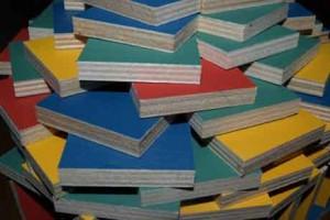 Pestas Bausteine im Test Domino Bauklötze Spielzeug